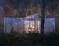 Australian Forest, Ronen Bekerman challenge