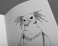 Drawings – Dessins