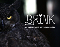BRINK - an Exhibition by Antler Gallery
