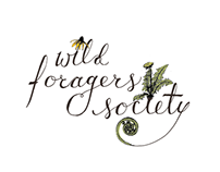 Logo | Wild Foragers Society