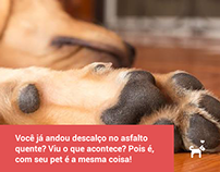 Identidade Visual Pet Posts