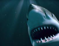 Shark VR