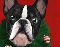 Bulldog de Natal