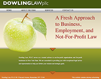 Dowling Law Web Design