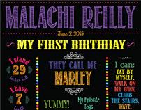 Marley's First Birthday Milestones