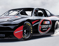 CANADIAN TIRE NASCAR SERIE