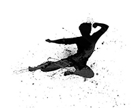 Bruce Lee: Illustrations