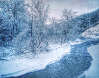 Iphone photography-Winter wonderland