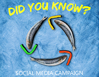Did You Know? Social Media Campaign