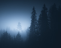 Ethereal Silence