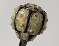 Polymodal Nociceptor IV