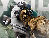 2015 Colorado State Football Wall Mural