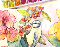 Flowers and birds in watercolor