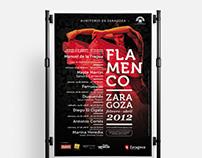 Flamenco Zaragoza 2012