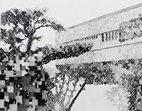 Serie Mosaicos II