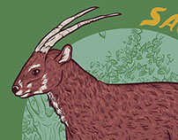 Saola - Endangered Species