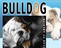Bulldog Rescue Club of America Logo