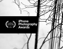 IPPA 2015 Honorable Mention