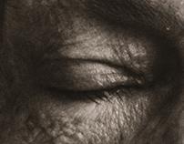 Ensaio Sobre a Cegueira | book campaign