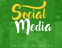 Rede social Frutos de Goiás 03