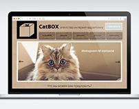 """CatBOX агентство интернет-маркетинга"" site"