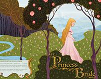 The Princess Bride Book Jacket