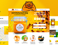 Landing Page Design for «Altaibear»