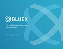 Brand & Visual Identity | BlueX