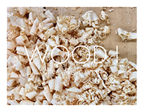 Wood I Portfolio