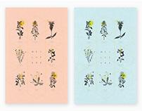 Les fleurs mellifères - Collectif blanc
