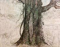 Tree, Candler Park, Atlanta, GA.