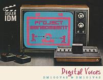 Final Project Unit - Digital Voices 2017