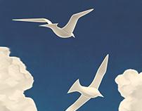 Summer Americana - Seagulls