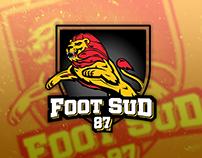 Identité visuelle Foot Sud 87