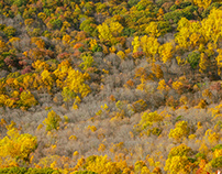 Colors of The Hudson Highlands