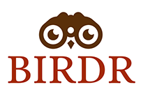 BirdR Logo for bird watching app prototype.