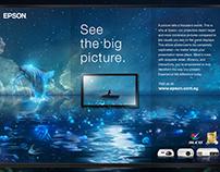 Epson — Flat Panel Displays VS. Projectors