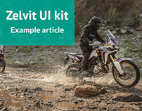 Example article of Zelvit UI kit
