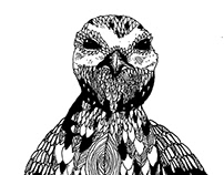 An illustrated guide to British birds