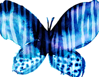 ANIMAL PATTERN BUTTERFLIES / illustrations