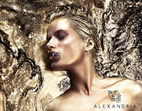 Alexandria- Branding
