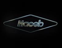 INSTITUCIONAL HACEB 2015