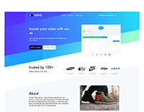 Iona Landing Page Design