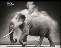 Página web,fotógrafo Nick Brandt. Diseño de Logotipo.