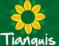 Tianguis Teapa 2016