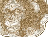 Monkey PN