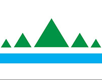 Flag Re-Design Project