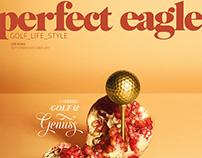 Perfect Eagle #4