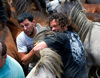 Rapa de Bastas 2014 Sabucedo, Galicia, Spain