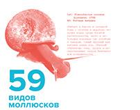 Плакат для Природного музея